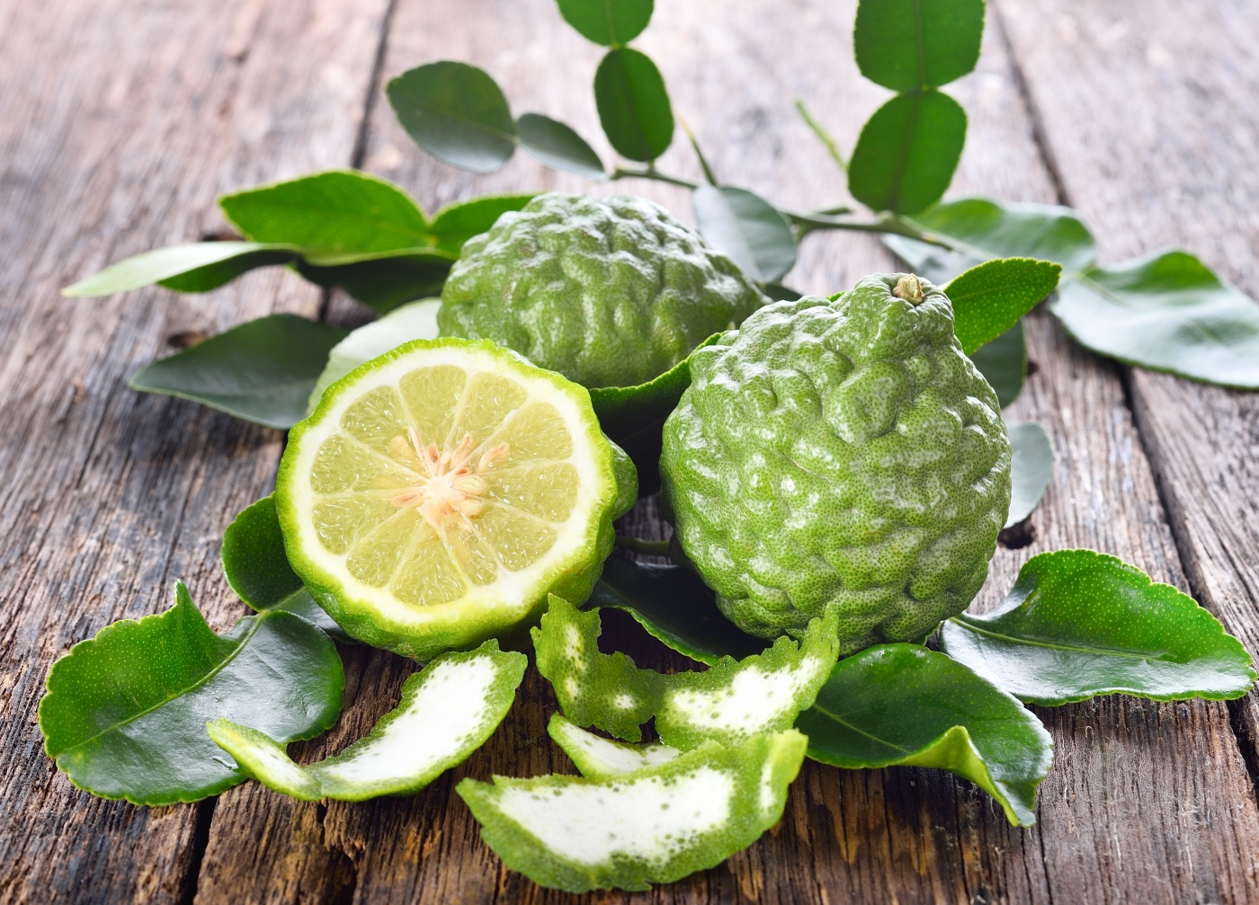 Makrut Limes – The Citrus that looks like a Brain – The Indigenous